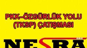 Avrupa'daki PKK cinayetleri