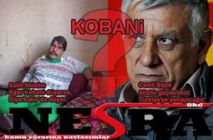 Kobani, Afrin, Haseke ve Kamışlı